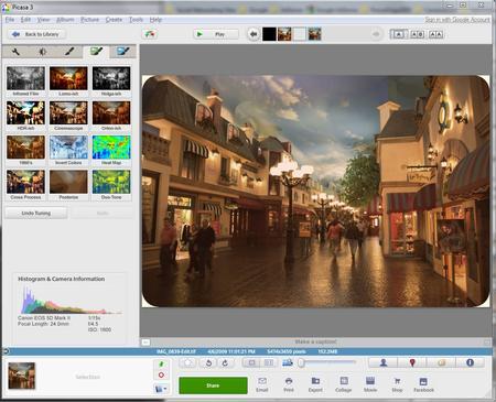 download Picasa 3.9